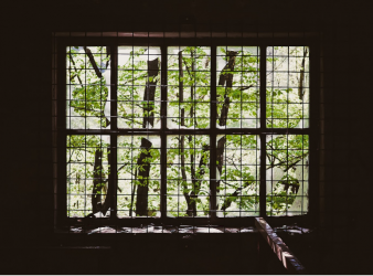 Reevaluating Worldview: Smashing The Window That Held Me Prisoner