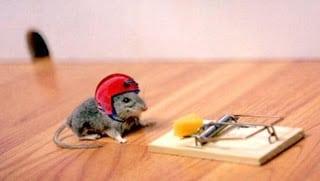 daredevil mouse