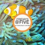 Fridays @ Five (February 24, 2017)